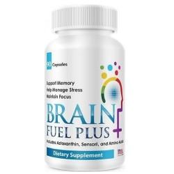 Brain Fuel Plus