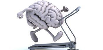 Brain Performance